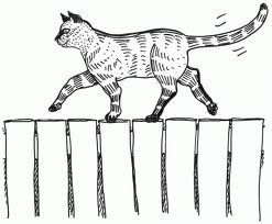 Cat cartoon with twitching tail