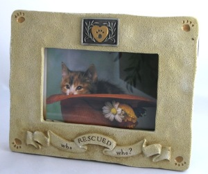 Who Rescued Who Cat Framee