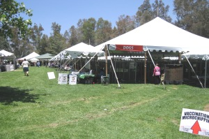 Mega Pet Adoption Event, June 28 & 29, Yucaipa, CA