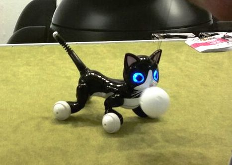 """Zoomer"" the new robotic cat with glowing eyes."