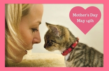 Mother's Day 2017 (1)